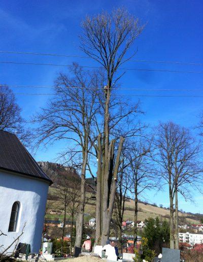 Pílenie stromov - Vyšný Kubín