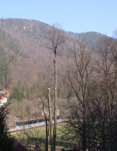 Stromy Ľubochňa