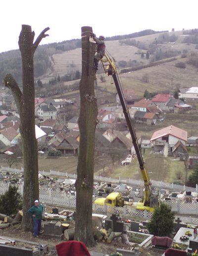 Pílenie stromov - Lúčky